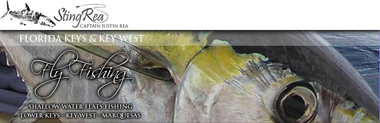 Key west offshore fly fishing sailfish tuna kingifsh for Bone fishing key west